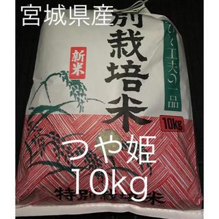 宮城県産 つや姫 10キロ 私が作ったこだわりのお米♡(米/穀物)