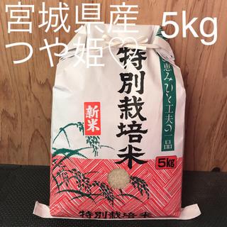 宮城県産 つや姫 5kg 星光が作りました♡(米/穀物)