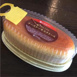チーズケーキ スクイーズ(その他)