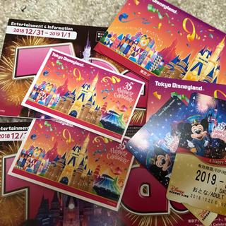 ディズニー(Disney)のディズニー カウントダウンチケット(遊園地/テーマパーク)