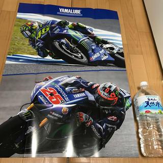 MotoGP ロッシ ビニャーレス 特大 ポスター(スポーツ選手)
