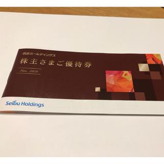 西武ホールディングス 株主優待施設利用券1冊(その他)