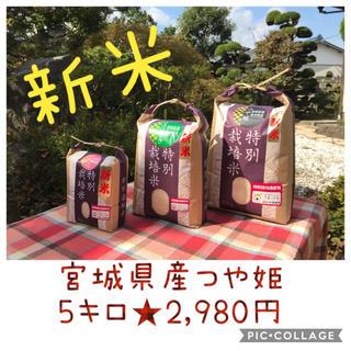新米☆大粒☆特A取得☆宮城県産つや姫5キロ(米/穀物)
