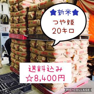 新米☆大粒☆特A取得☆宮城県産つや姫20キロ(米/穀物)