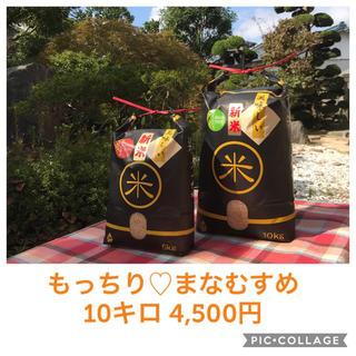 チョッパーママ様☆5キロ×2袋☆新米☆大粒☆宮城県産まなむすめ10キロ(米/穀物)