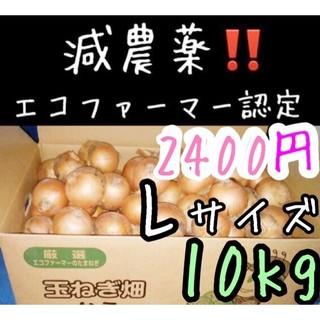 北海道産 減農薬 玉ねぎ Lサイズ 10キロ