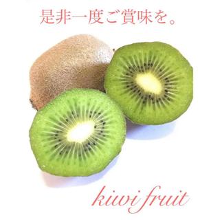 千葉県船橋産 グリーンキウイフルーツ 約4.5kg 約30玉(フルーツ)
