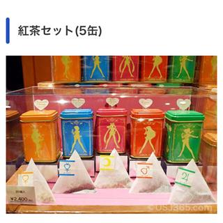 セーラームーン(セーラームーン)のUSJ × セーラームーン 紅茶セット(茶)