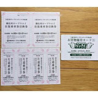 ペア 御在所ロープウェイ 往復乗車券 2枚 観光リフト券4枚 東急ハンズ(その他)