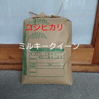 新米です❕  白米5㎏(米/穀物)