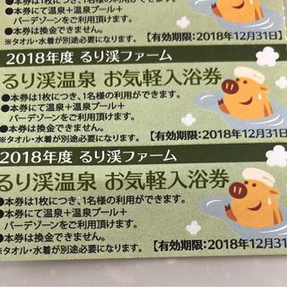週末値下げ⤵︎るり渓温泉お気軽入浴券2枚(その他)