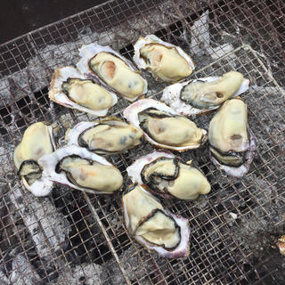 本場 広島県産 殻付き牡蠣 30個 朝採れ直送便(魚介)
