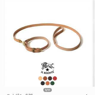 イルビゾンテ(IL BISONTE)の犬 首輪 イルビゾンテ(リード/首輪)