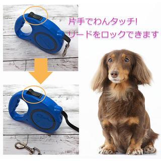 愛犬 散歩 リード 自動巻取り機能付 伸縮最大5メートル 5カラー(リード/首輪)