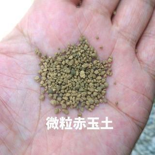 微粒赤玉土 約1.2リットル 900g 焼成済み サボテン・多肉植物・盆栽などに(その他)