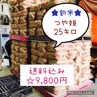 かおる様専用☆大粒☆特A取得☆宮城県産つや姫25キロ(米/穀物)