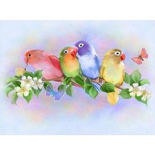 30*40全面貼り付けタイプ フルダイヤモンドアート カラフルで愛らしい小鳥(その他)