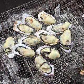 本場 広島県産 殻付き牡蠣 50個 朝採れ直送便(魚介)