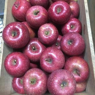 味に自信あり!青森県産りんご サンふじ 4,5キロ