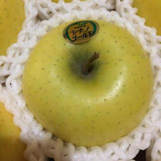 ★青森弘前農家直送★人気★葉とらずシナノゴールド★約10キロ(フルーツ)