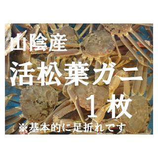 ☆山陰産 活松葉ガニ 1枚 (魚介)