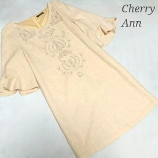 チェリーアン(cherry Ann)のCherry Ann 刺繍ワンピース チェスティ リランドチュール スナイデル(ミニワンピース)