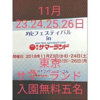 11月23.24.25.26日 東京サマーランド 入園無料五名まで(プール)