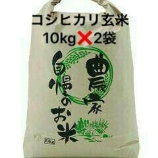 ⭐滋賀30年産⭐新米⭐コシヒカリ玄米10kg×2袋♪送料込み⭐(米/穀物)