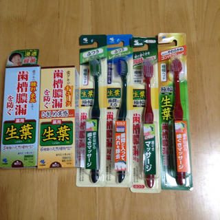 コバヤシセイヤク(小林製薬)の生葉 薬用ハミガキ2 歯ブラシ4(歯磨き粉)
