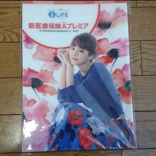 桐谷美玲 クリアファイル (非売品)(女性タレント)