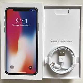 Apple - 純正 ライトニングケーブル  Apple iPhone