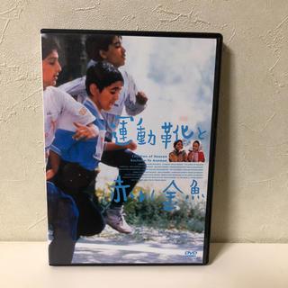 運動靴と赤い金魚 DVDレンタル(外国映画)