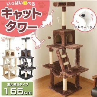 キャットタワー 送料無料 日曜日限定価格!