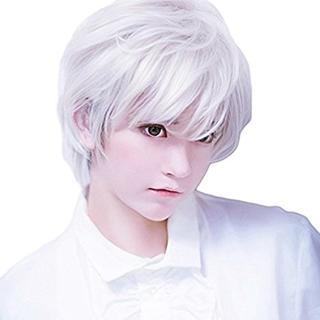 ☆大人気☆ コスプレ用 ウィッグ 銀髪 白髪 ビジュアル系ショート(ショートストレート)