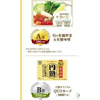 有機野菜 カード キャンペーン(野菜)