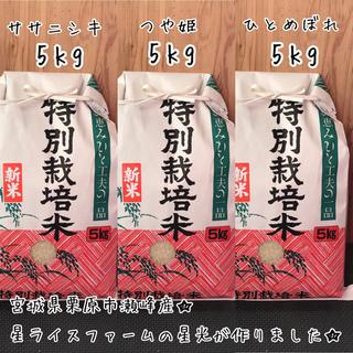 3品種食べくらべ5kgセット白米★宮城県栗原市瀬峰産★(米/穀物)