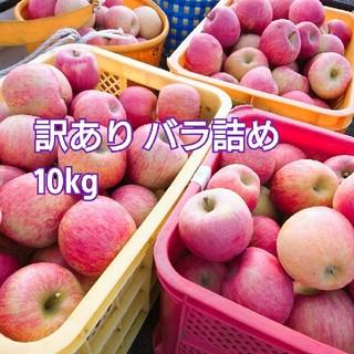 10kg 山形県産 ふじ 訳あり バラ詰め(フルーツ)