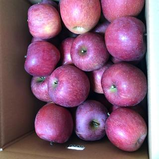 山形産サンふじりんご家庭用訳あり約10キロバラ詰(フルーツ)
