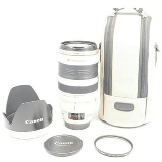 キヤノン(Canon)の良品 キヤノン CANON EF 35-350mm  L USM 望遠レンズ(レンズ(ズーム))