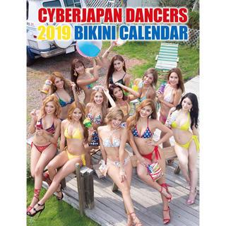 サイバージャパン  カレンダー 2019年(カレンダー/スケジュール)
