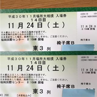 大相撲 九州場所 11月24日 ペア(相撲/武道)