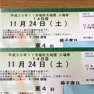 大相撲九州場所 11月24日 ペア(相撲/武道)