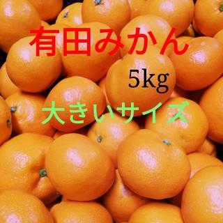 みかん 大玉3L 5kg 有田みかん 約25個(フルーツ)