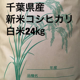 新米コシヒカリ白米24キロ(米/穀物)