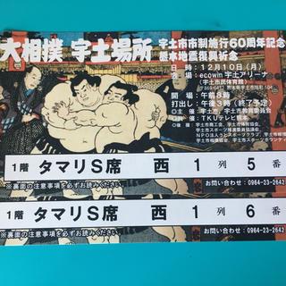 大相撲 熊本 宇土場所 チケット タマリS席 1列目2枚セット (相撲/武道)