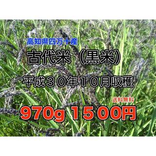 古代米(黒米) 30年度産10月収穫 970g 送料無料(米/穀物)