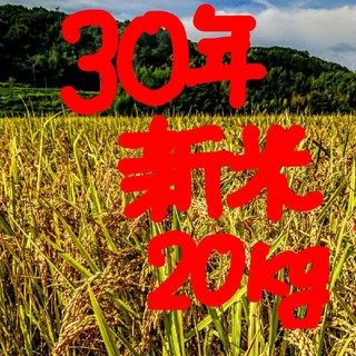30年新米 低農薬玄米20キロ 山田錦の里より農家直送。(米/穀物)
