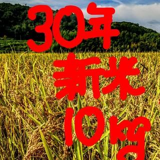 30年新米 低農薬玄米10キロ 山田錦の里より農家直送。(米/穀物)