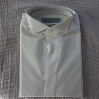 ウイングカラーシャツ(その他)