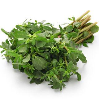 Purslane種子(赤)パースレーン 100粒(野菜)